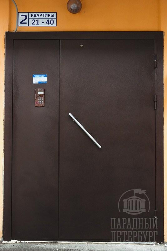 входные двухлистовые двери